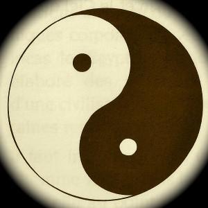 Diagramme Yin & Yang